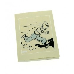 CARNET DE NOTES TINTIN 10X15 CM ART D HERGE